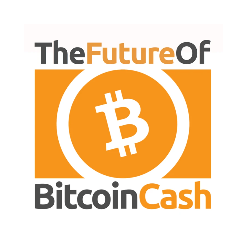 https://www.thefutureofbitcoin.cash/